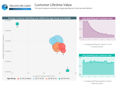 Healthcare Customer Analytics with Power BI