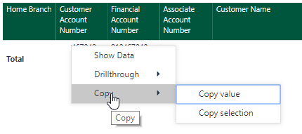 Copy in Power BI.png