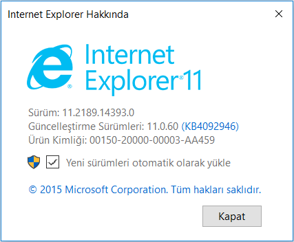 iexplorer version.PNG